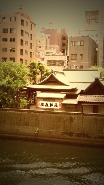 写真: 位置的にはルカ子の神社はここでOKだっけ?