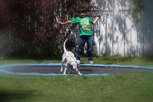 Love Jumping!!!