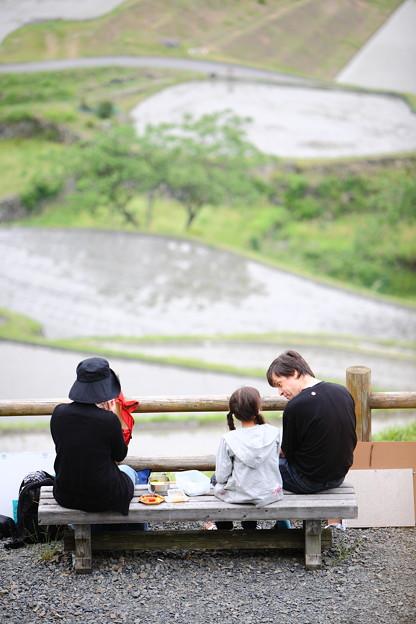 写真: 『オイシイ? ~坂折棚田~』
