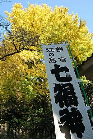 9-sitifukuzin-7