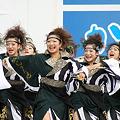 写真: 旭川北の大地_14 - かみす舞っちゃげ祭り2011