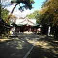 Photos: 世田谷線:宮の坂駅界隈_世田谷八幡宮-07社殿a