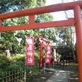 Photos: 世田谷線:宮の坂駅界隈_世田谷八幡宮-03厳島神社a