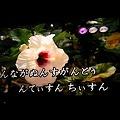 Photos: 玉城さんは沖縄の歌をいっぱ...
