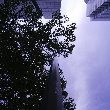 2010-09-11の空