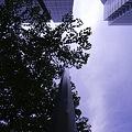 Photos: 2010-09-11の空