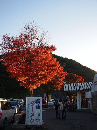 '10紅葉1