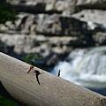 Photos: 滝を眺める・・