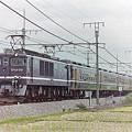 Photos: EF 64 1001 くつろぎ