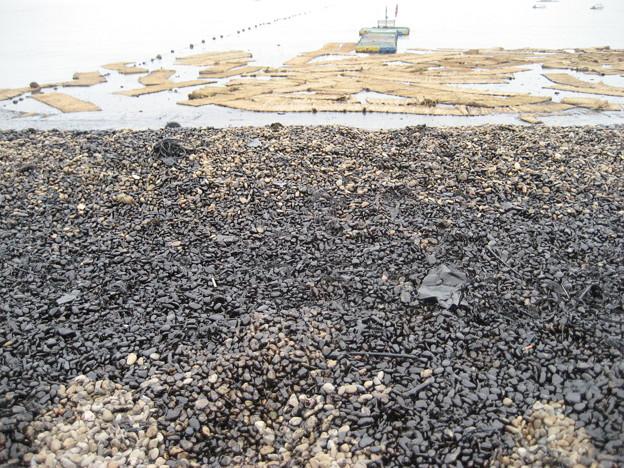 浜辺の汚染