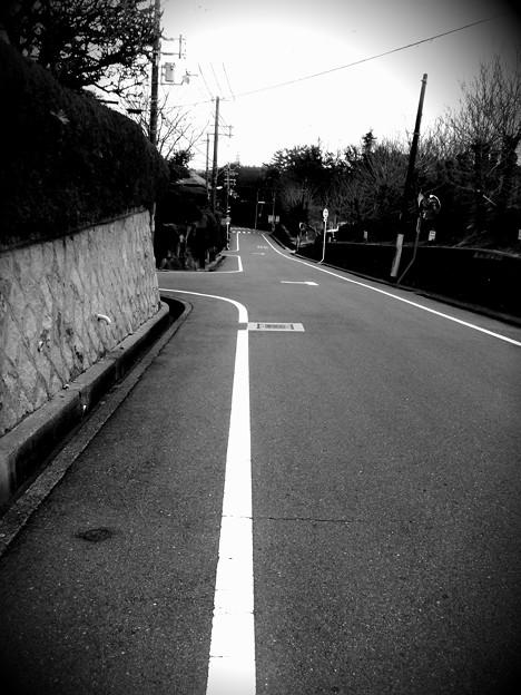 学校前、通学路