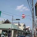 桜坂。2011年。