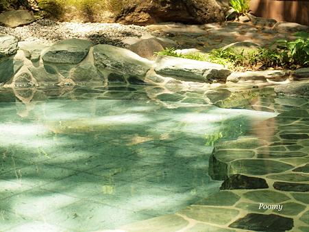 森の温泉に行きましょう