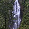 写真: くろくまの滝・青森