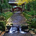 越後路・弥彦神社