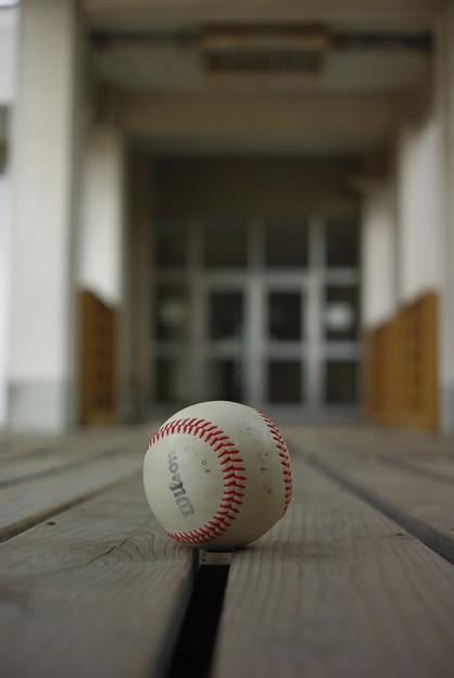 渡り廊下と白球