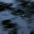 Photos: 水~怪奇シリーズ