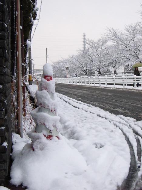 冬将軍 (1) 2011年 1月 雪だるま??