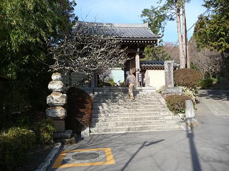 110225-浄明寺 (1)