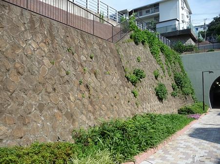 110622-東横廃線 反町→横浜 (36)