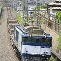 Photos: _MG_9660 ある日の73レ