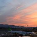 Photos: エコ伊丹空港
