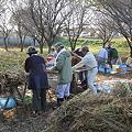 Photos: 脱穀作業