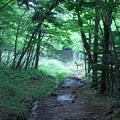 Photos: 20110630_045236