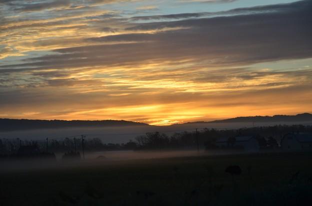 長沼の朝霧