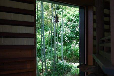 2012.06.06 鎌倉 長谷寺 経蔵から若竹と紫陽花