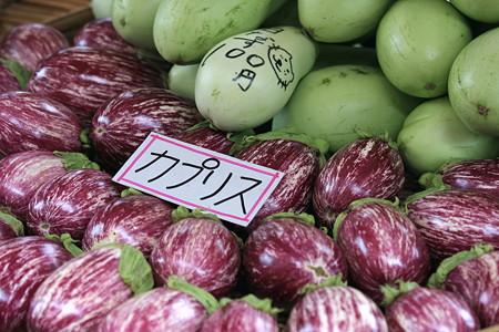 2010.08.20 高山 宮川朝市 白茄子