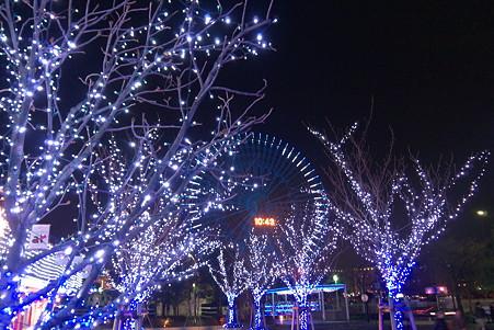 2011.01.15 みなとみらい ドックヤードガーデン 広場