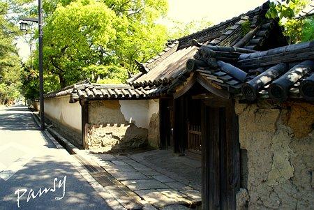 奈良 薬師寺にて・・10