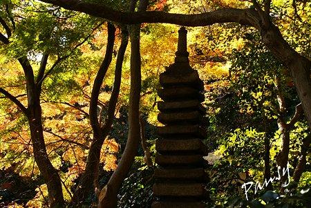 石塔・・紅葉の三渓園・・12