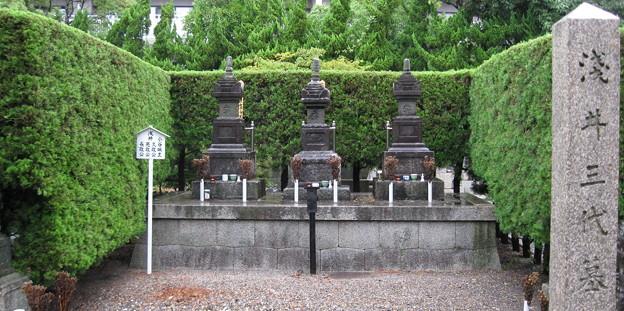 徳勝寺浅井家三代の墓