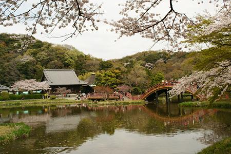 浄土式の庭園!(110410)