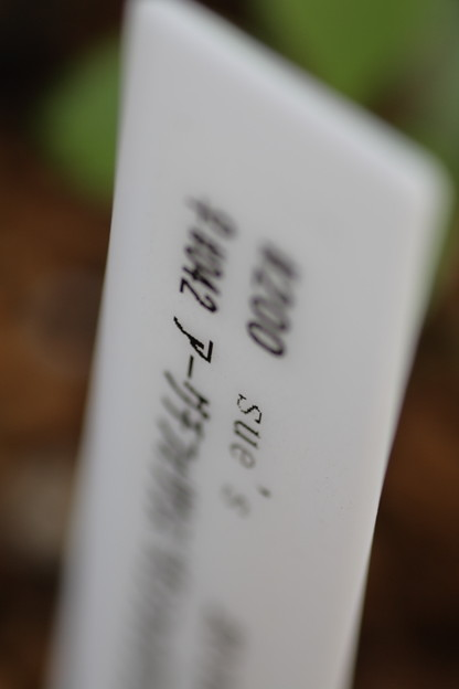 2011_0515_067