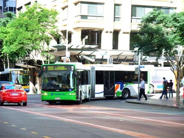LoganCity Bus service 556