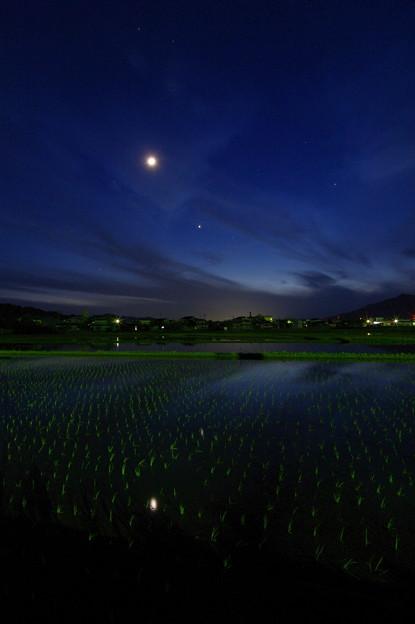 夜空の星 地上の星(2)