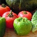 朝のもぎたて夏野菜たち