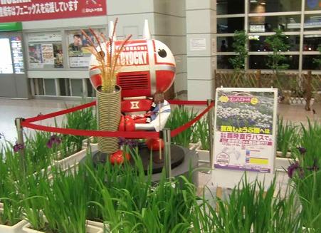 賀茂しょうぶ祭り 2010'-220520-1