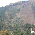 Photos: 木が倒れた山