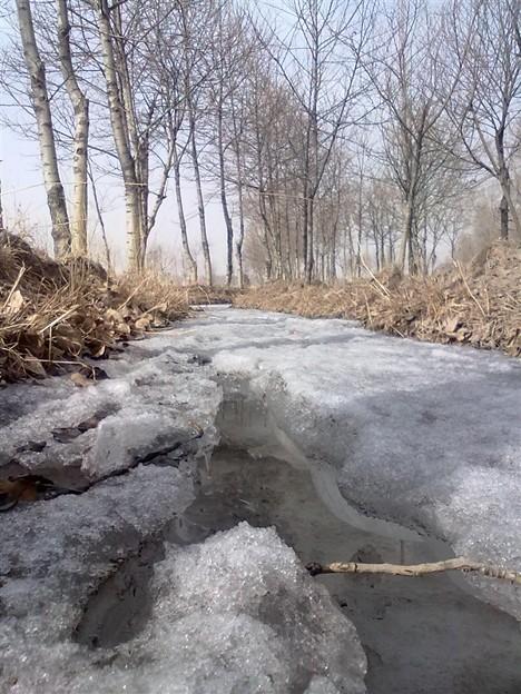 Ice stream