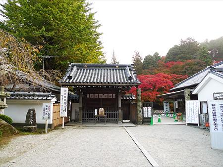 雷山千如寺大悲王院(44)