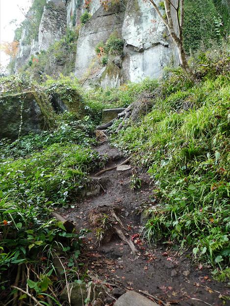 写真: 一目八景~見晴らし台への登山道(1)
