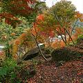 写真: 一目八景~見晴らし台への登山道(6)