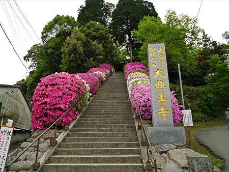 大興善寺(2)