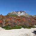 Photos: IMG_8924那須 茶臼岳 姥ヶ平の紅葉