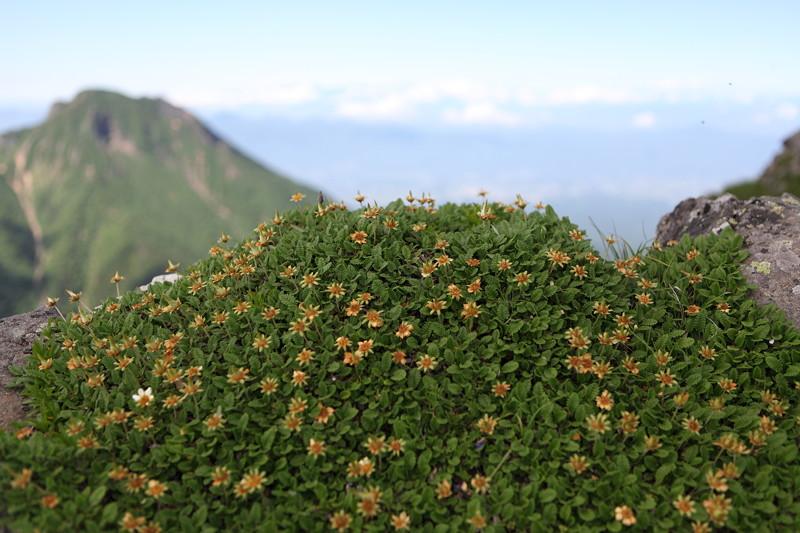 IMG_3651八ヶ岳(赤岳・横岳・硫黄岳)