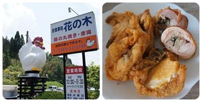 20120528 鶏 専門店